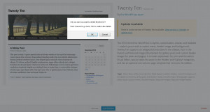 remove removing WordPress themes instructions removal how