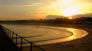 dog gorleston routes walks locations