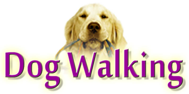 dog walking services Norfolk Suffolk Great Yarmouth Gorleston Hopton Lowestoft
