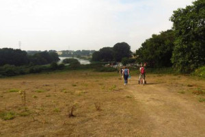 lound lakes walks dog friendly gorleston