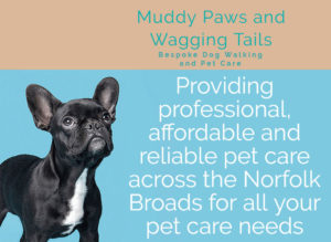 muddy paws great yarmouth acle dog walking