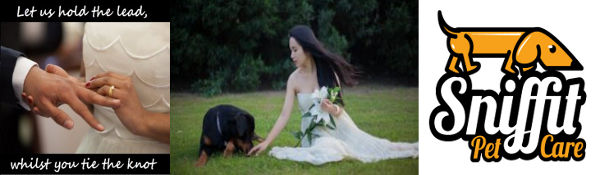 dog handlers sitters wedding marriage ceremony service day
