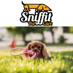 sniffit dog walking